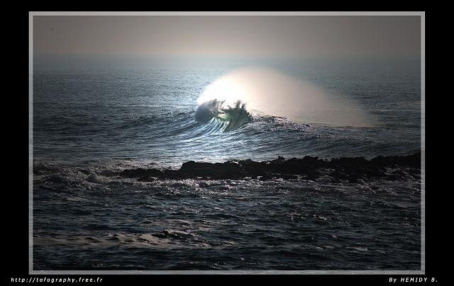 bzh surflog :: Matériel Surf :: Kneeboard Daddy seal 150e
