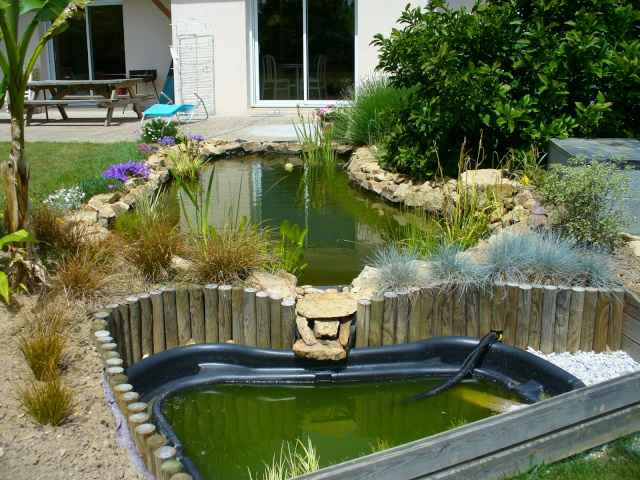 Awesome bassin de jardin tortue pictures design trends - Bassin aquatique pas cher ...