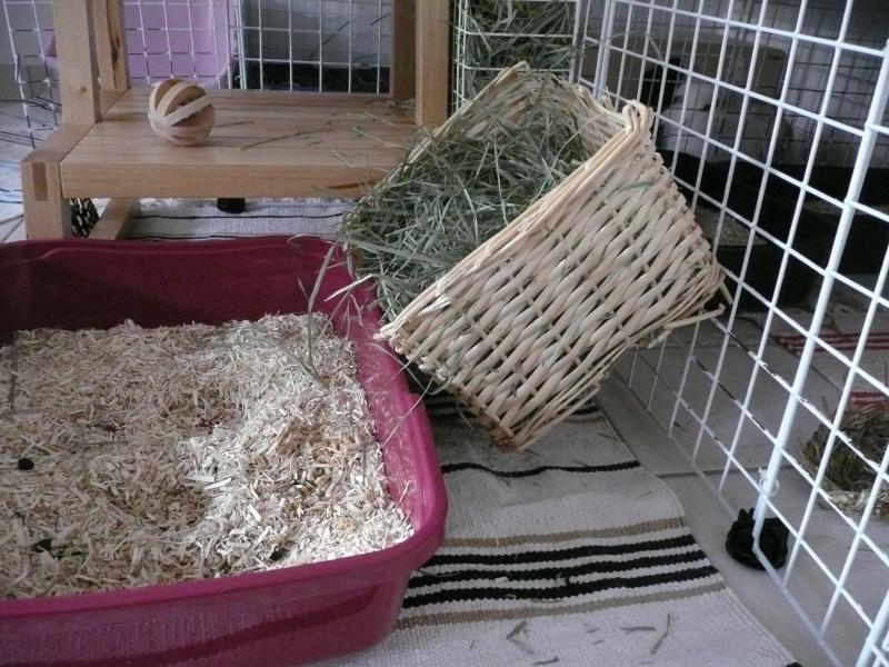 Fabriquer un ratelier foin for Abreuvoir lapin fait maison