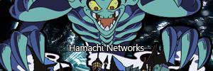 WDA Hamachi Networks