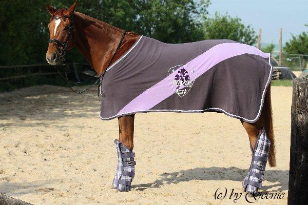in welcher farbe ist euer pferd eingekleidet und welche. Black Bedroom Furniture Sets. Home Design Ideas