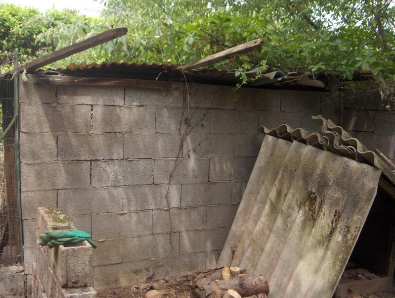 aide urgente construction enclos abri pour chats errants 69