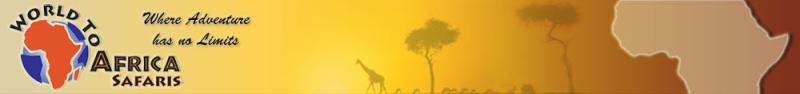 world of Africa