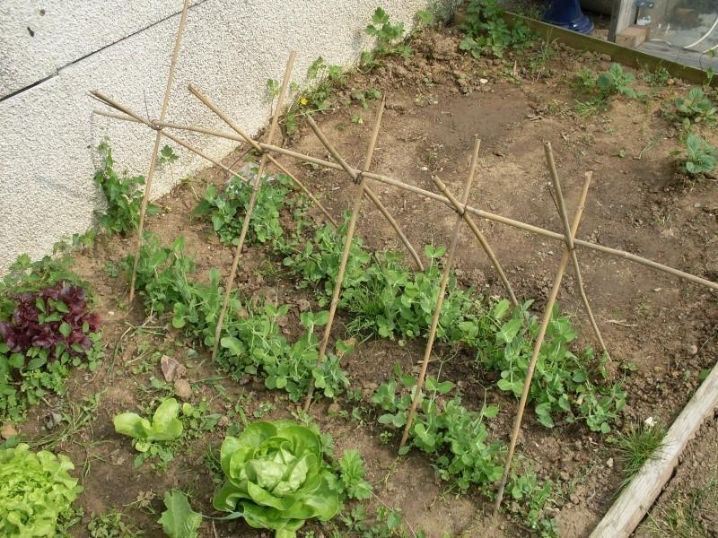 Deco petit jardin que mettre clermont ferrand 3239 clermont ferrand petit - Bassin canard beton orleans ...